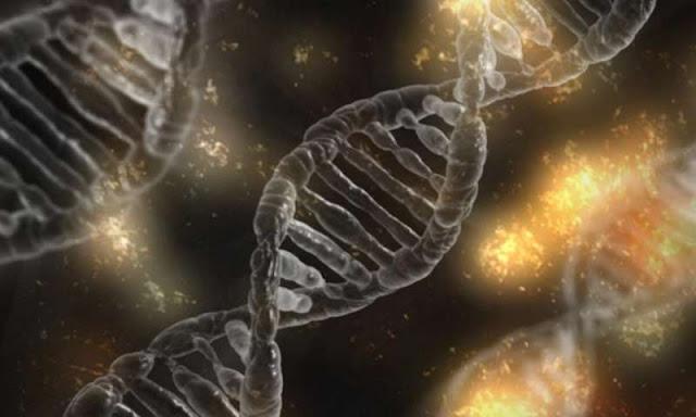 çalışma, insan büyüme hormonunun epigenetik yaşlanmayı tersine çevirebileceğini öne sürüyor
