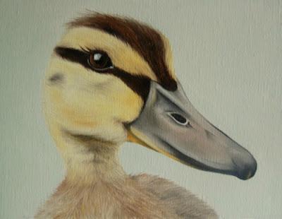 Pet Portrait Duckling Oil on Canvas