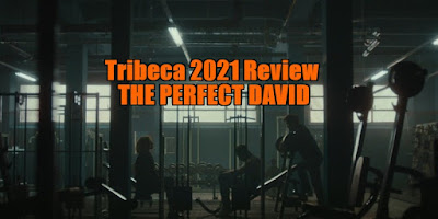 the perfect david review