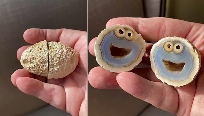 Encuentra una piedra con la cara del monstruo de las galletas.