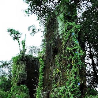 Ruínas de Candelária tomadas pela vegetação local.