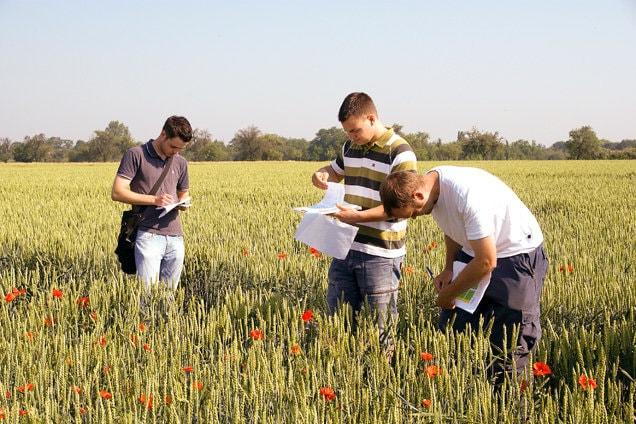 Kết quả hình ảnh cho đất nông nghiệp úc