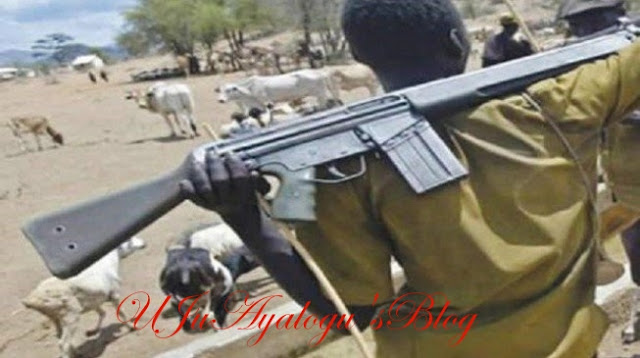 Panic As Foreign Herdsmen Take Over Oyo, Ogun Forest Reserves