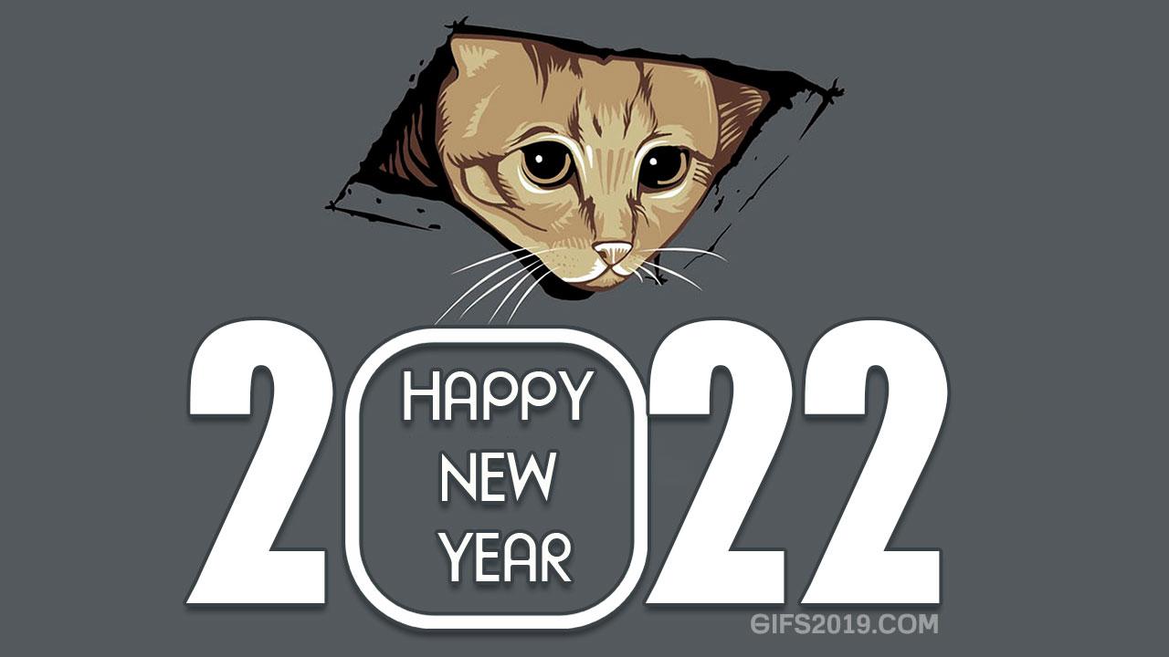 happy new year 2022 memes