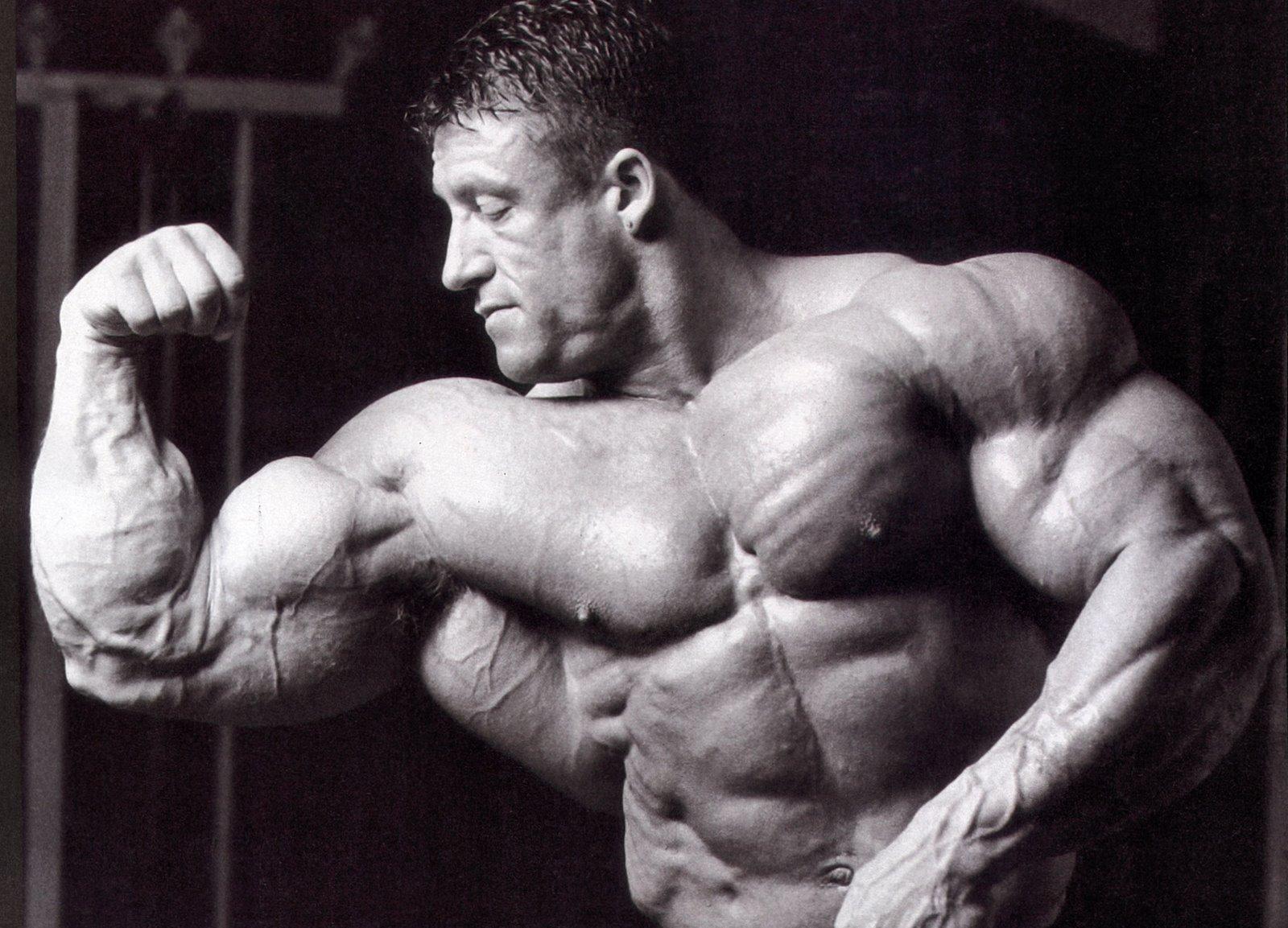 Bodybuilding vs. Aesthetics