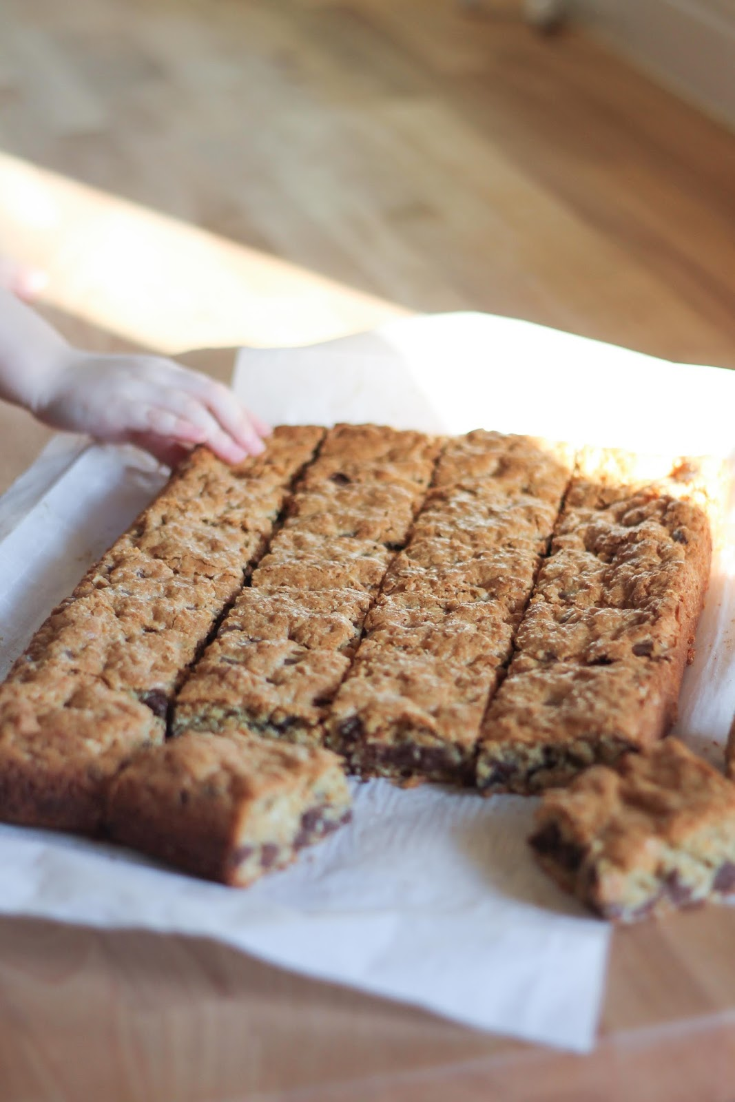 Oatmeal Chocolate Chip Bars – Gourmommy