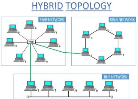 Topologi Jaringan : Pengertian, Fungsi, Macam-Macam, Dan Gambar Topologi Jaringan Komputer Lengkap - Cintanetworking.com