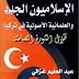 الإسلاميون الجدد والعلمانية الأصولية في تركيا pdf _ عبد الحليم غزالي