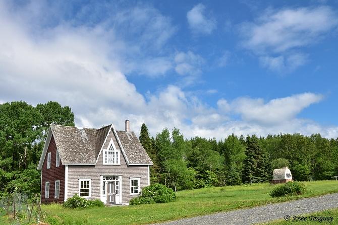 maison ancienne-arbres-verdure