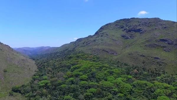 Mais 10 (dez) Reservas Ambientais serão criadas em Jacobina e Ourolândia, dentre elas a maior RPPN em Caatinga do Estado da Bahia.