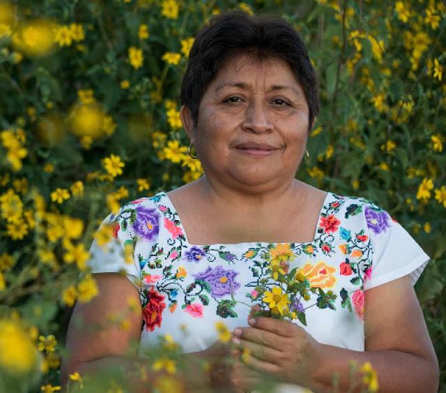 Leydy Pech, apicultora maya, gana Premio Ambiental Goldman 2020
