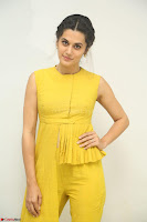 Taapsee Pannu looks mesmerizing in Yellow for her Telugu Movie Anando hma motion poster launch ~  Exclusive 107.JPG