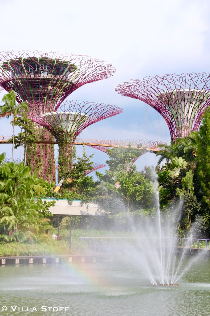 Singapur | Supertree Grove im Garden by the Bay