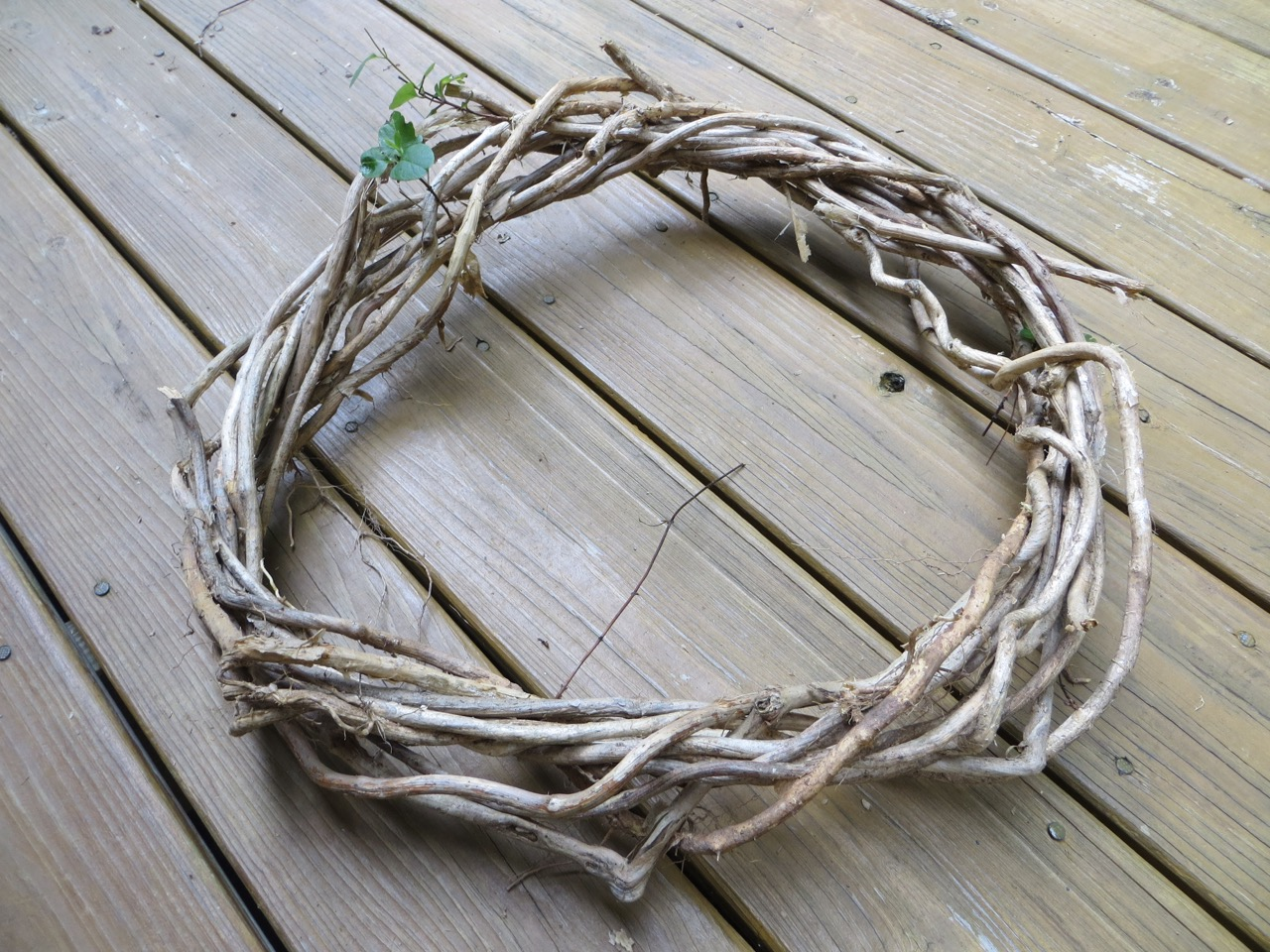 The Project Lady - How to Make Your Own Magnolia Wreath from Scratch!