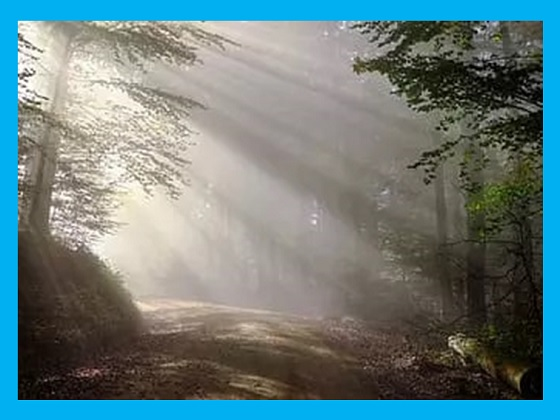 sifat cahaya bergerak lurus