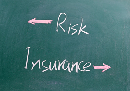 Some ideas on a risk management system and Insurance
