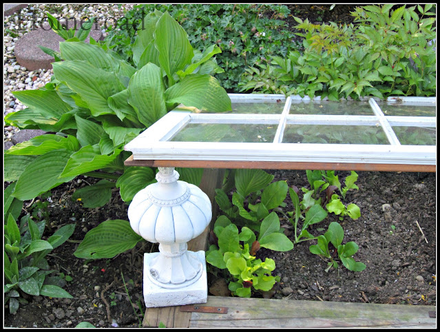 White window greenhouse and white finial
