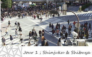 http://wearesmallandtheworldisbig.blogspot.be/2014/03/jour-1-shinjuku-shibuya-et-le-jetlag.html