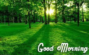 Awesome good morning nature.