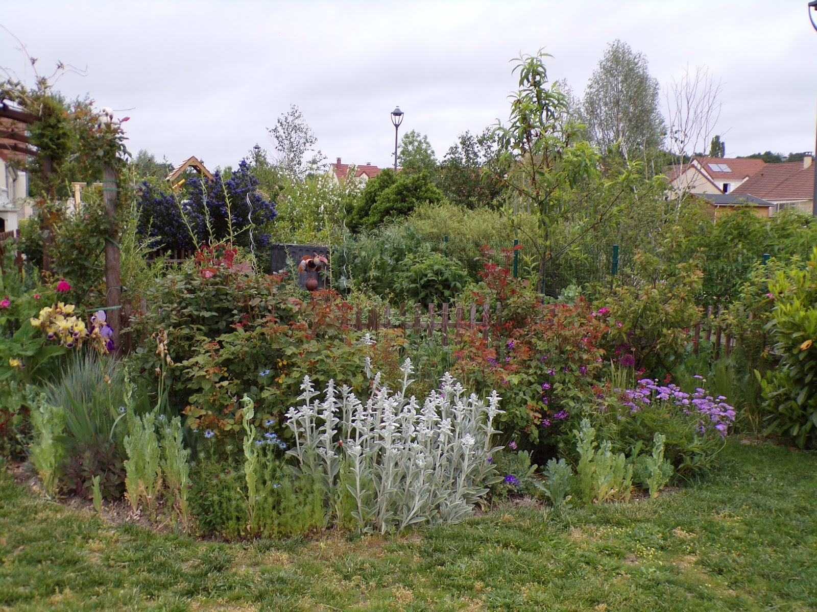 Mon petit jardin en Sologne: Le massif Invincibelle fin mai