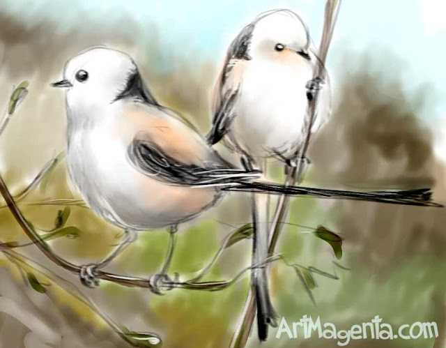 Long-tailed Tit by ArtMagenta.com