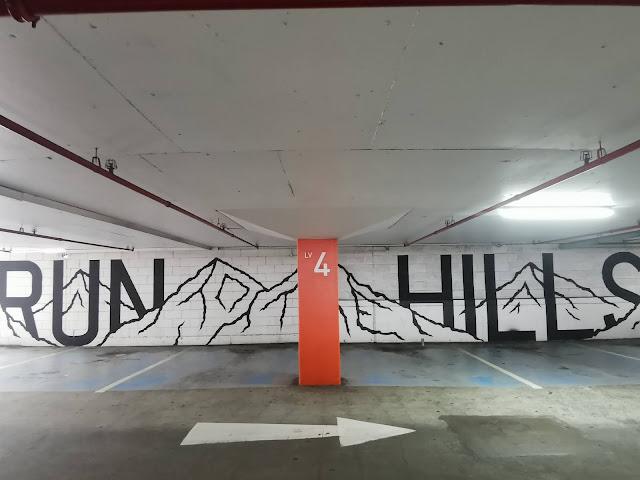 Wollongong Street Art by Sion Griff   2016 WonderWall Festival