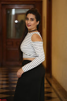 Manjusha in sleevelss crop top and black skirt at Darshakudu pre release ~  Exclusive Celebrities Galleries 002.JPG