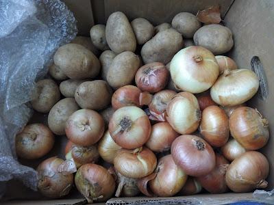 cebollas-patatas