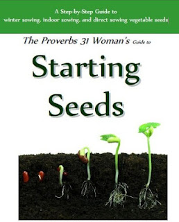 https://proverbsthirtyonewoman.blogspot.com/2012/01/the-proverbs-31-woman-guide-to-starting.html
