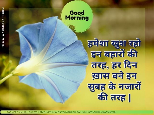 good morning shayari pic download