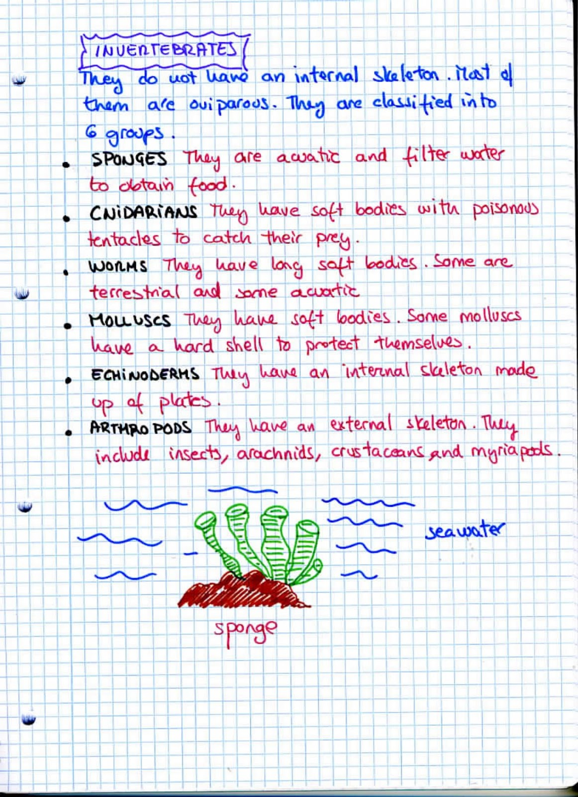 Natural Science 5th Course Unit 2 Kingdoms Of Living Things