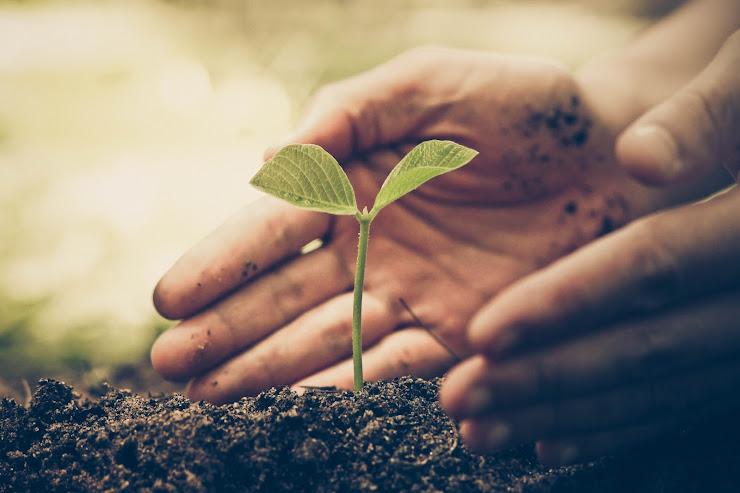 Curso de producción y consumo sostenible