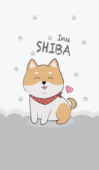 My Shiba Inu.