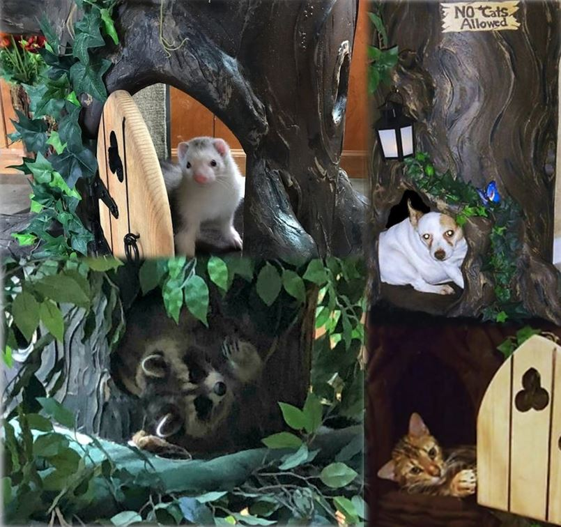 Wood Cat Trees