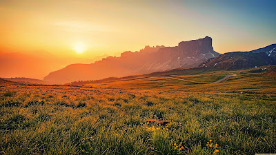 Paisaje impresionante con flores verdes, montaña y sol al atardecer