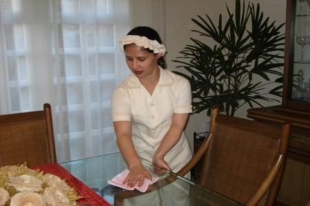 Perfil da Empregada Doméstica