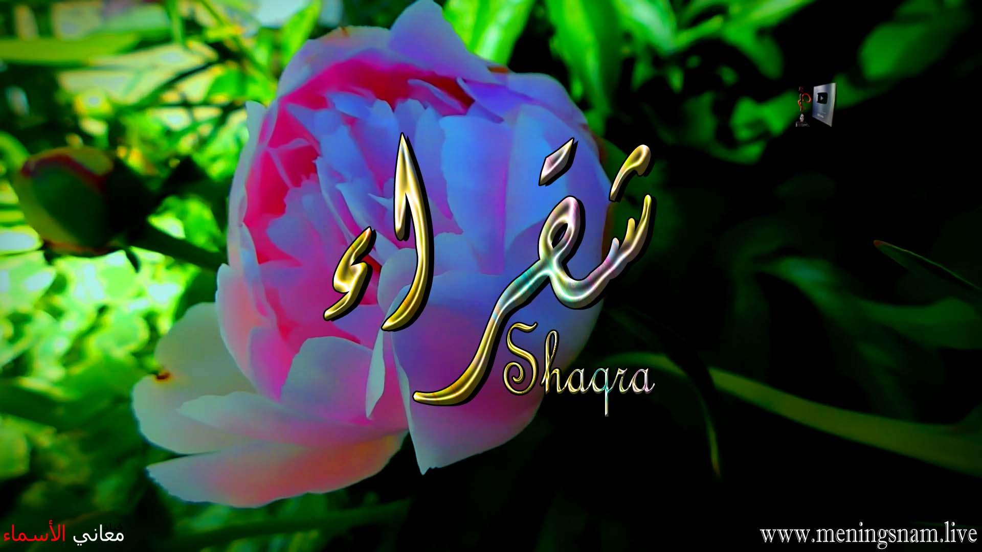 معنى اسم شقراء وصفات حاملة هذا الاسم Shaqra
