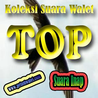 Download Suara Inap Top