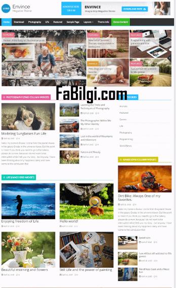 Wordpress Ücretsiz Magazin Sitesi Teması İndir Seo Dostu 2020 Envince