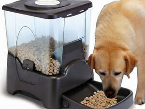 Automatic Pet Feeder 50% off