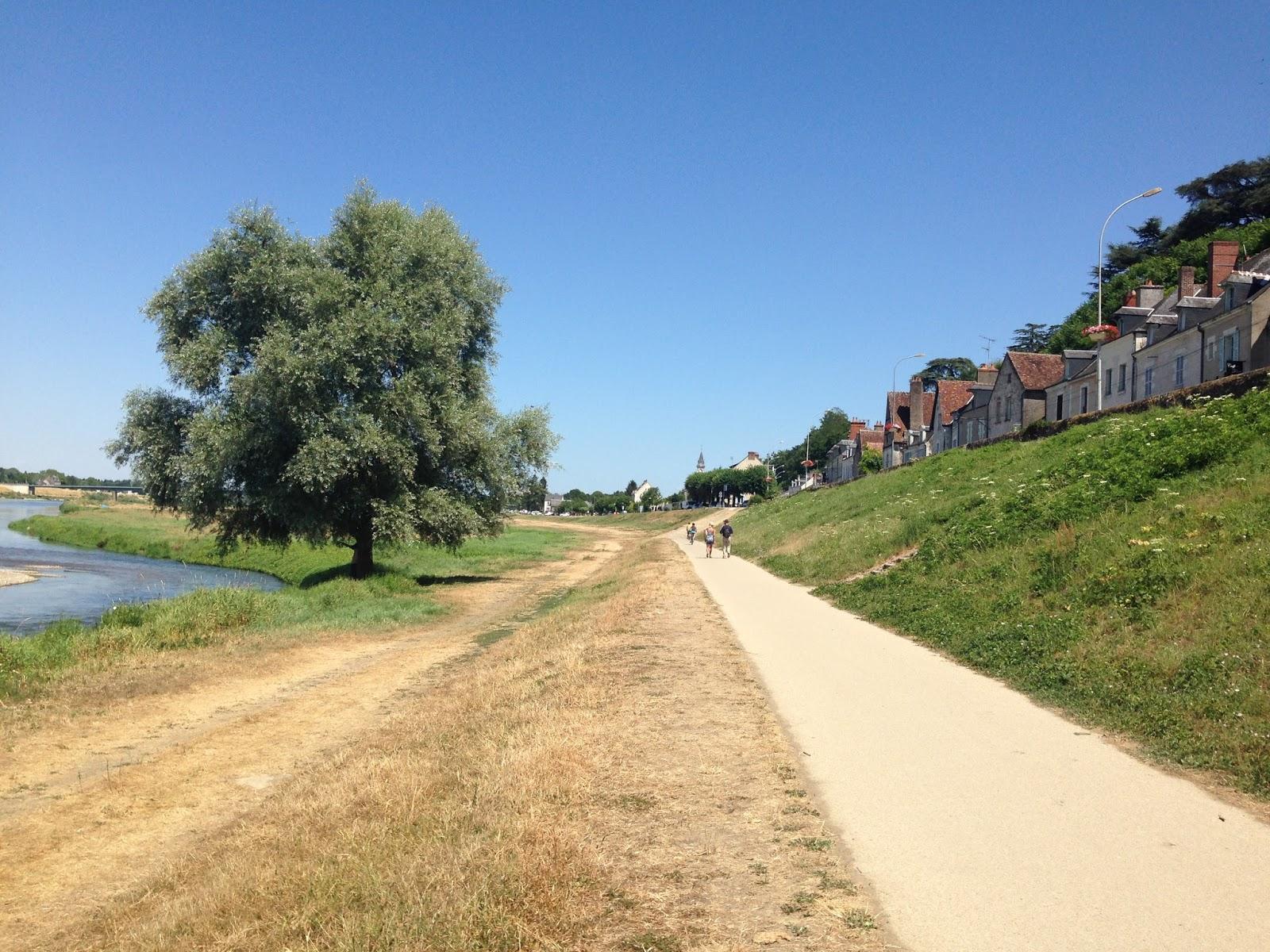 trasa rowerowa wzdłuż Loary