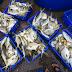 Chủ bè Khánh Hòa bán cá chạy bão sắp tới