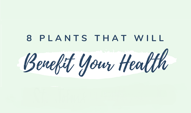 Plants that will incredibly benefit your health