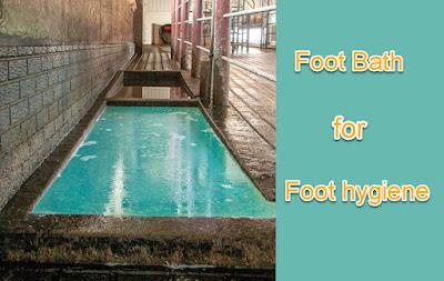 foot bath for hoof health