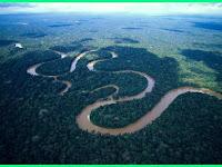 4  Hal Unik Dan Menarik Tentang Amazon