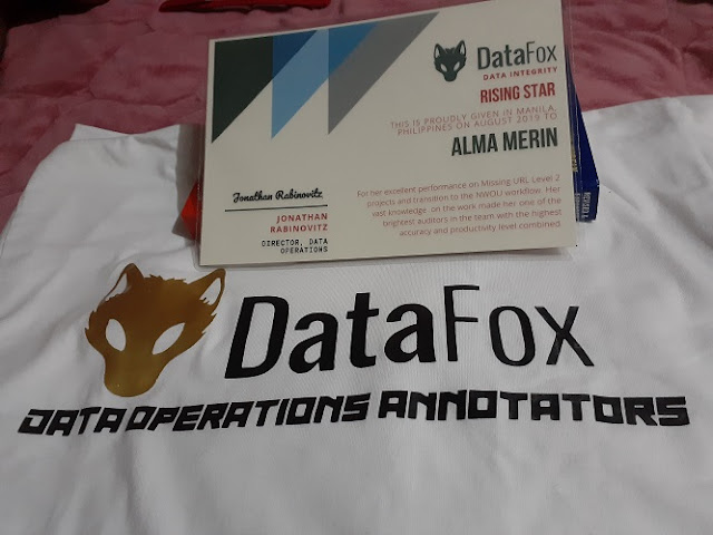 Datafox, Data Operations Annotator
