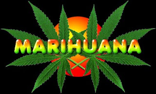 Como plantar marihuana. Plantar marihuana. como dejar la adiccion a la marihuana. dejar la marihuana. las drogas