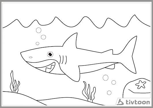 Gambar Mewarnai Kartun Hiu Berenang Seekor Ikan Gambar Sapawarga