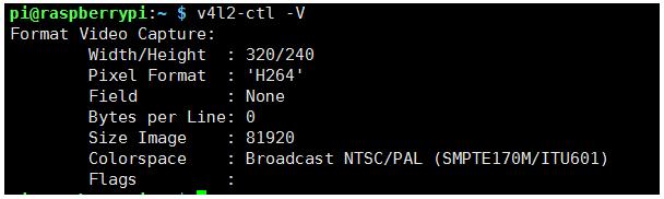 Ghost Socket: 라즈베리파이에서 V4L2 - RTSP 서버로 비디오