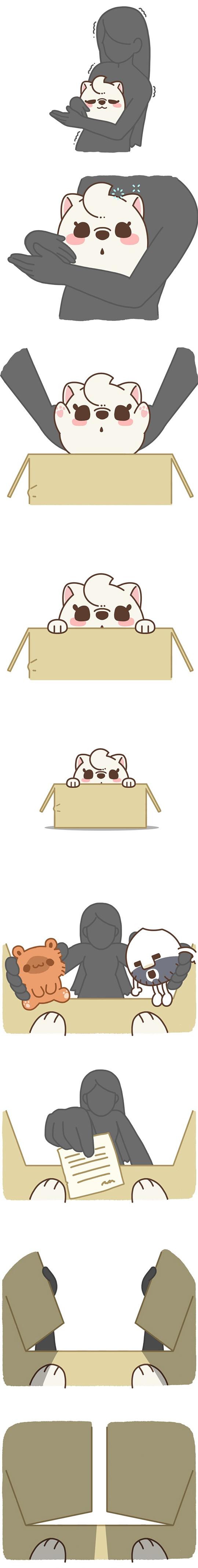 Chú cún Awa #6: Nhẫn tâm
